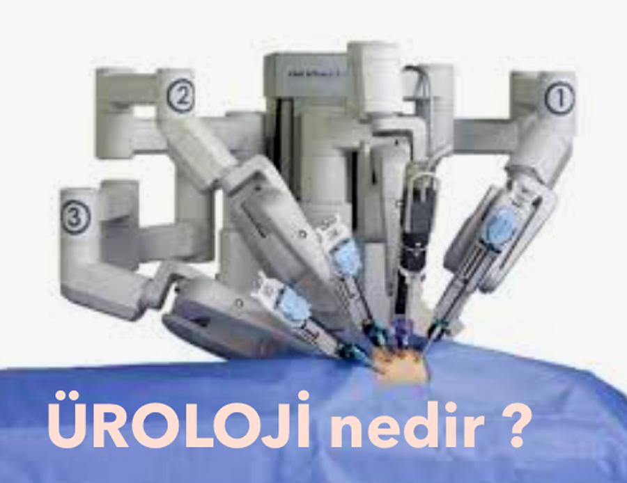 uroloji nedir