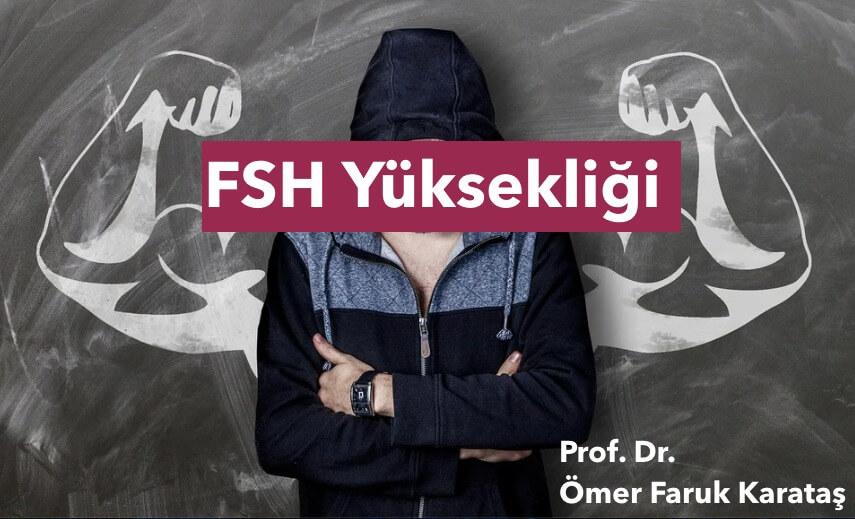 fsh yuksekligi